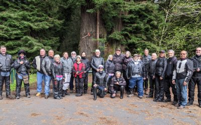 2021-03-27-28 Ferndale / Fortuna / Ave of the Giants Ride